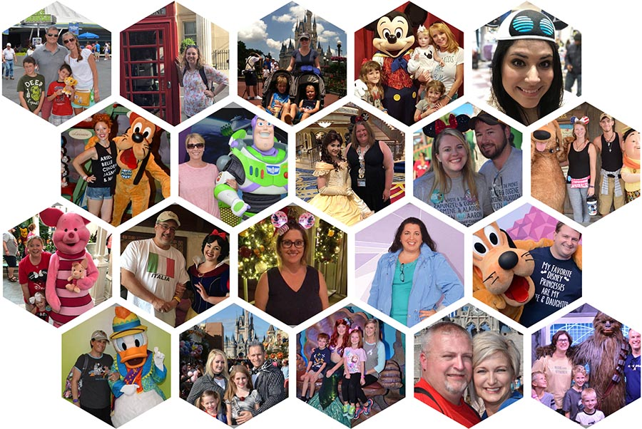 The Vacationeer Disney Travel Agents Honeycomb