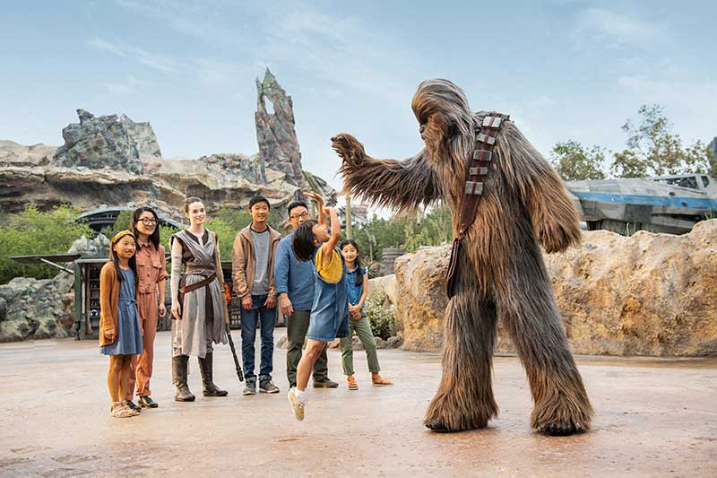 Chewbacca at Disney's Hollywood Studios