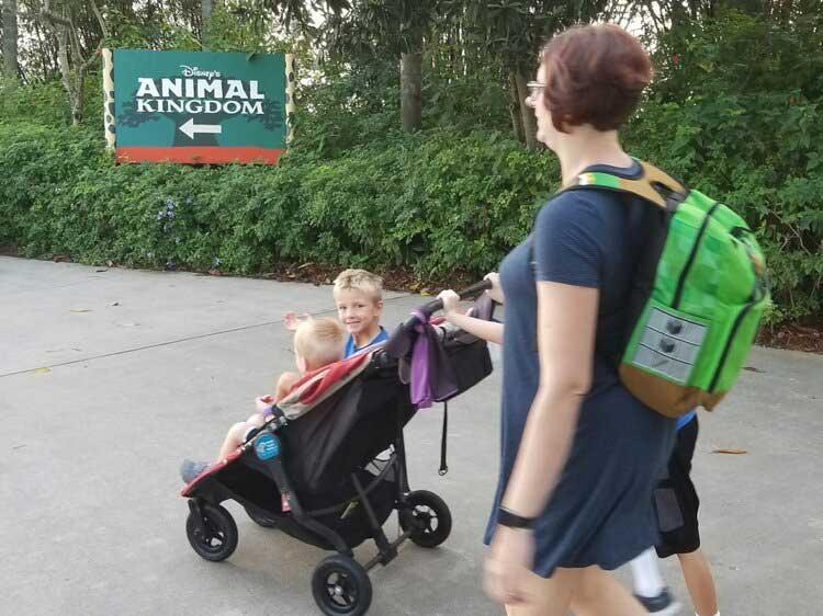 Disney World Pushing Stroller